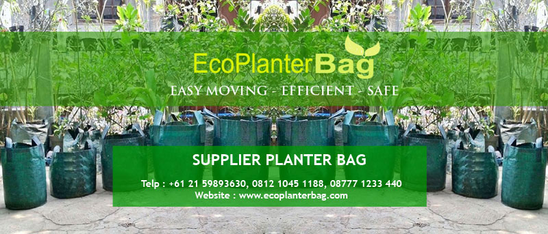 Supplier Planter Bag